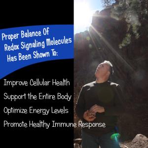 Proper Redox Balance